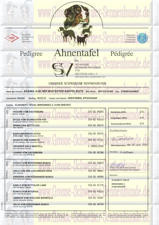 Abstammungsurkunde Personalausweis